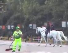 Mierdas de caballos y príncipes